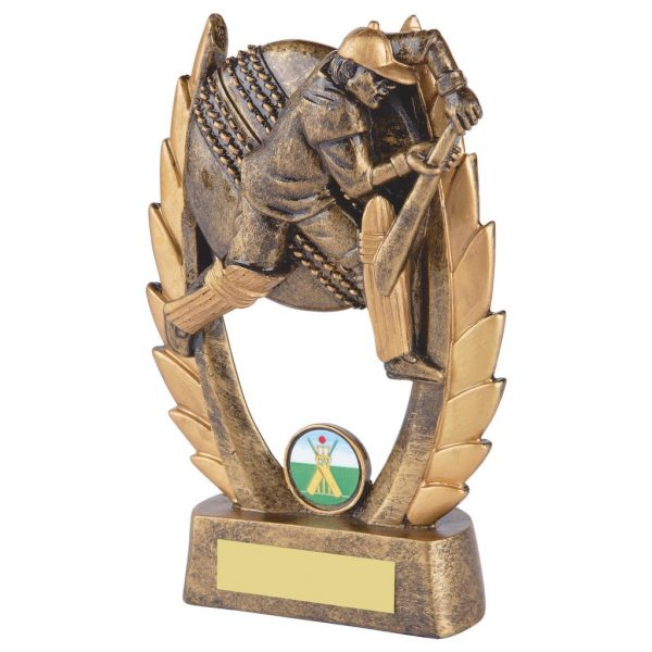 Budget Priced Cricket Batter Trophy. Ideal for batting averages or junior cricket trophies.