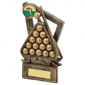Buy today Fine Detail Snooker Trophy. Firstly this is a great trophy range for any winner runner up or competitor. Ideal for all snooker competitions