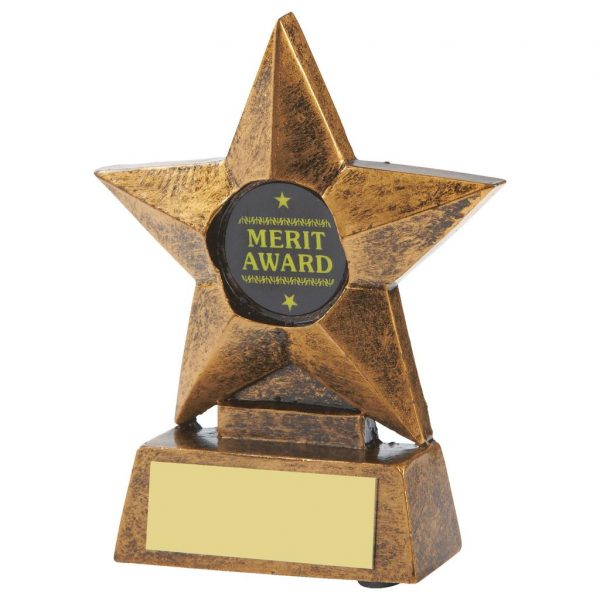 School Super Star Trophy 10cms tall.