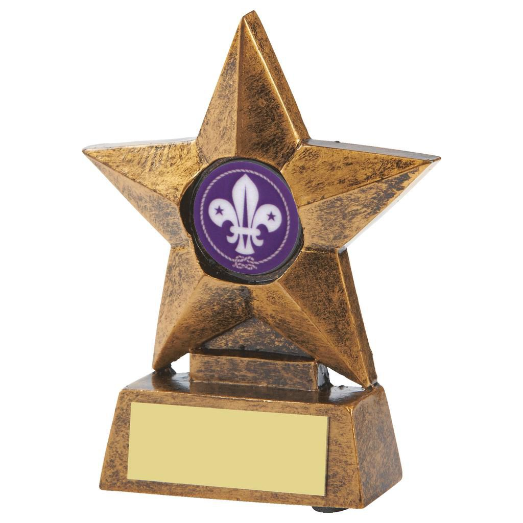 Scouts Cubs and Beavers Star Trophy 10cms