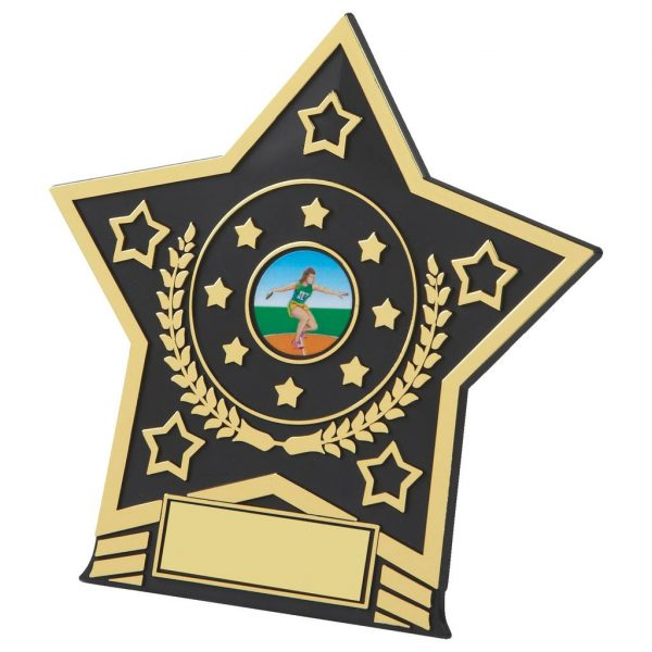 Black and gold coloured budget plastic star shape plaque incorporating a space to add an activity centres