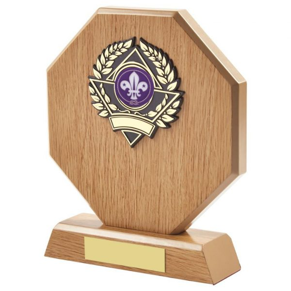 lightwood coloured scouts, cubs and beavers trophy is hexagon shaped and includes a choice of standard coloured scouting centre