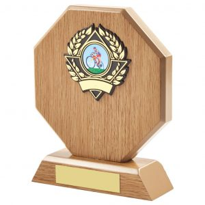 cycling wood trophy is a hexagon shaped MDF based material. Includes a choice of standard coloured cycling centres. Fitted with a gold and black coloured activity centre holder and a felt beize on the bottom