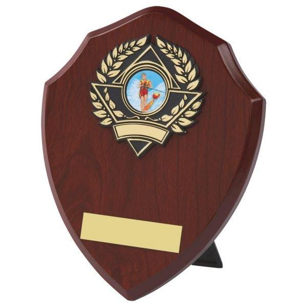 Traditional Shaped Replica Shield