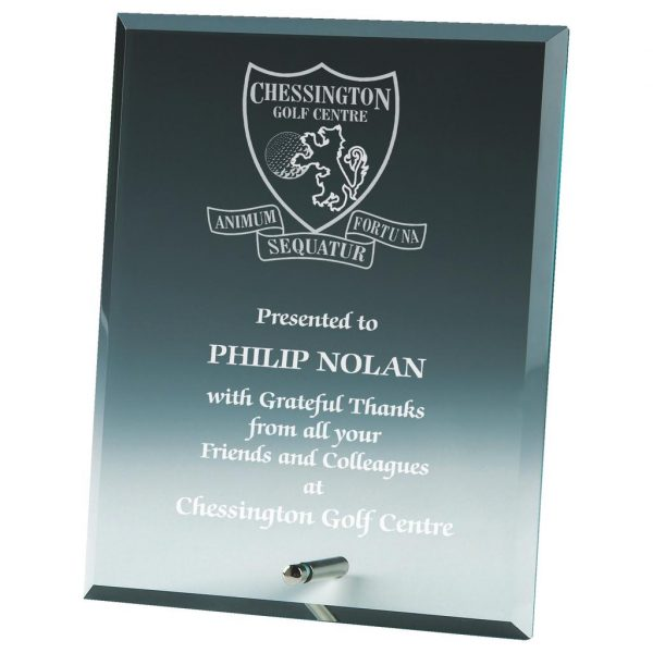 Flyball Special Award Glass Trophy