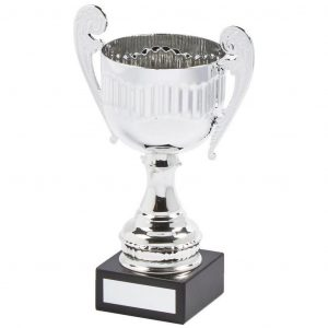Budget Presentation Cup 19.5cms. a metal alloy body and stem with decorative handle. Chrome coloured leave a bright shiny finish
