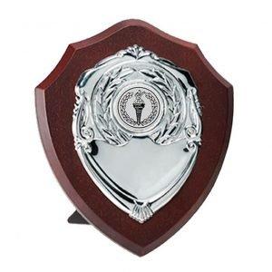 Traditional Darkwood School Shield 12cms