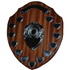 Annual Presentation Shield 14""
