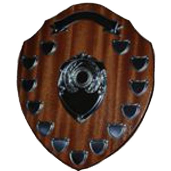 "Annual Presentation Shield 14"""