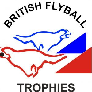British Flyball Trophies