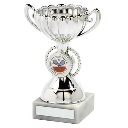 School Mini Achievement Cup