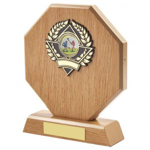 light wood lacrosse trophy is hexagon shaped and includes a standard coloured lacrosse activity centre