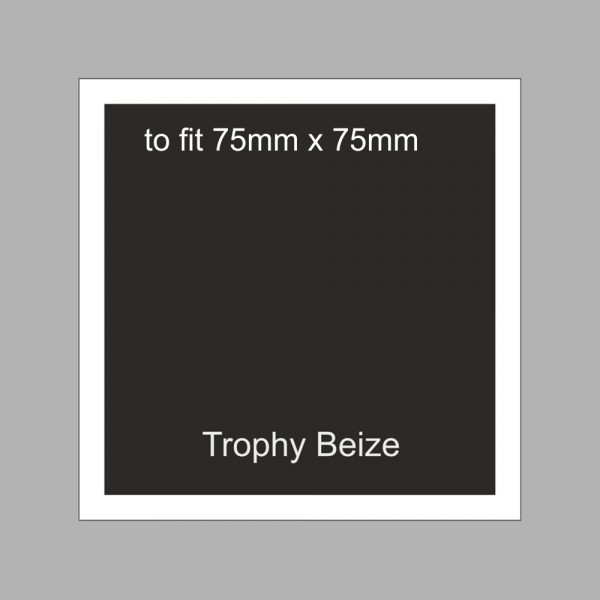 Trophy Beize Self-Adhesive Backed 75mm x 75mm