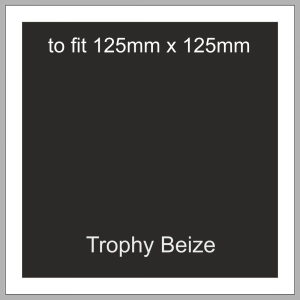 Trophy Beize Self-Adhesive Backed 125mm x 125mm