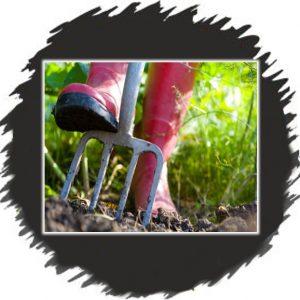 Gardening Trophies