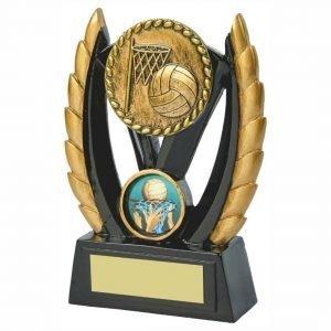 Netball Team Trophy 12cms
