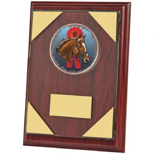 Rosewood Coloured Multi Sports Plaque.