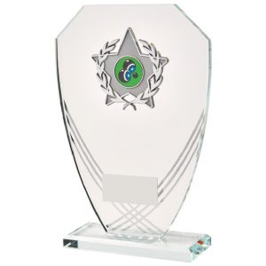 Glass Trophy in Presentation Box 17cms