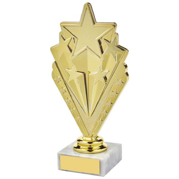 Star Trophy Gold Coloured 17.5cms