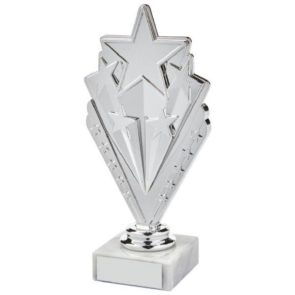 Star Trophy Silver Coloured 17.5cms