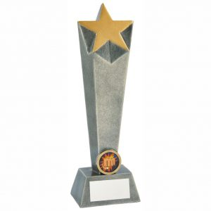 Star Column Martial Arts Trophy 25cms. A value for money columned star trophy. Ideal for any karate, judo or any marital arts, perfect for all winner or runner up.
