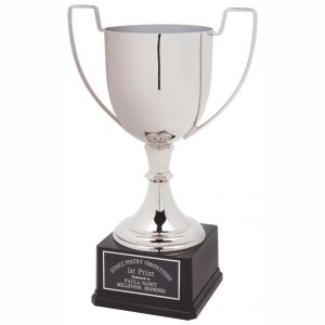 Nickel Plated Standard Cup