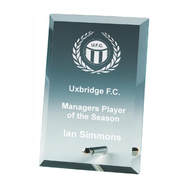Glass Recognition Trophy 15cms