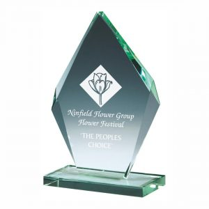 Recognition Glass Trophy 16.5cms