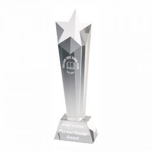 Star Tower Trophy 23cms