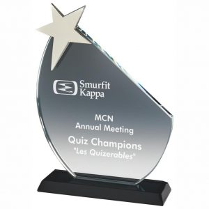 Star Recognition Trophy 20cms
