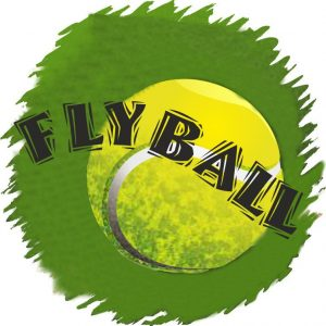 Flyball Trophies