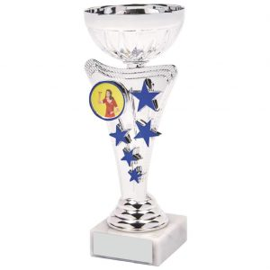 Low Priced Multi Sports Cup 27.5cms
