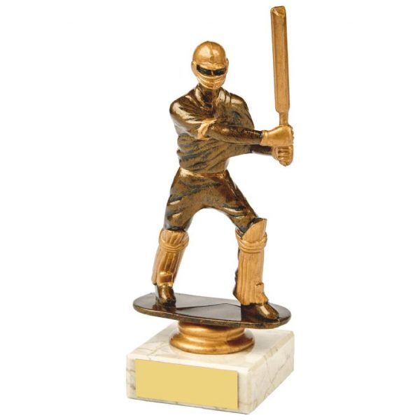 Budget Cricket Batter Trophy 16cms