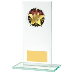 A low priced Darts Glass Trophy