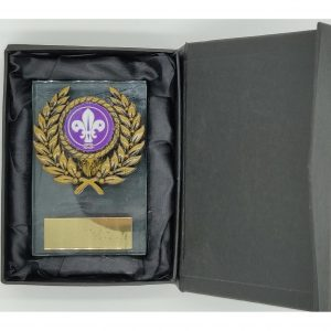 Budget Scouting Glass Trophy 9cms