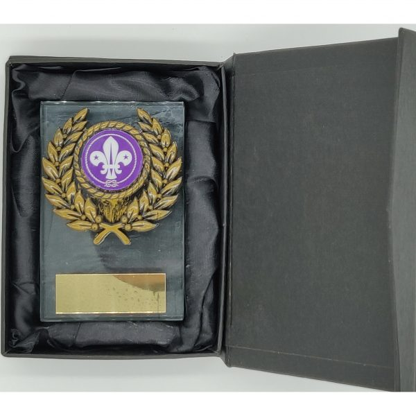 Budget Priced Scouting Glass Trophy 9cms