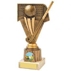 Budget Hockey Scene Trophy 19cms