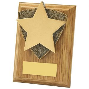 Star Style Plaque 10cms