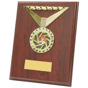 multi sports plaque is an MDF based material with a rosewood coloured finish and includes a standing strut on the reverse. Fitted with a shiny gold coloured ribbon shaped activity centre holder