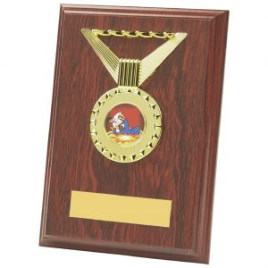 sports plaque is an MDF based material with a rosewood coloured finish and includes a standing strut on the reverse. Fitted with a shiny gold coloured ribbon shaped activity centre holder and a large choice of centre