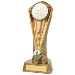 Golfing Trophy 21cms Constructed from a two tone antique gold coloured hard plastic composite material. Incorporating a golf ball image and golfing activity centre.