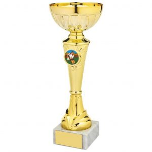 Budget Sporting Cup. a gilt coloured metal alloy bowl and hard plastic composite stem and riser. Including a space to accept an activity centre for most sports and pastime.