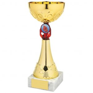 Bargain Sports Cup. a gilt coloured metal alloy bowl and hard plastic composite stem and red riser. Including a space to accept an activity centre