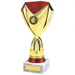 Low-Cost Sport Trophy. a gilt and red coloured plastic composite riser with integral area to add an activity centre