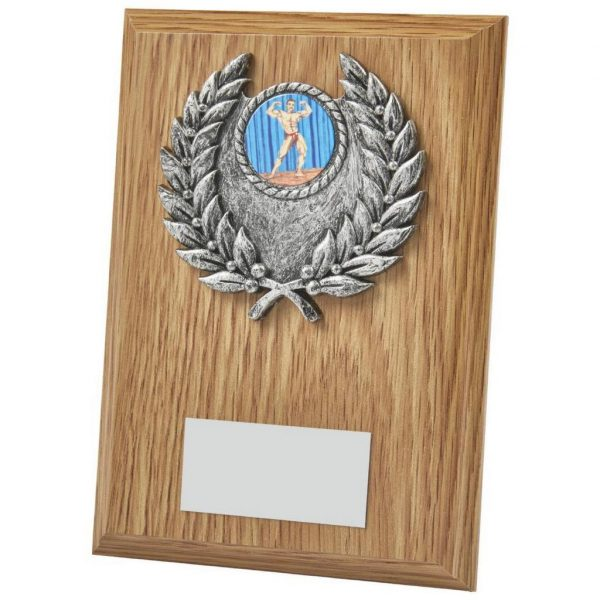 Clearance Line Trophy Plaque. light wood trophy plaque includes a standing strut on the reverse. Each fitted with a gold and antique silver coloured activity centre holder