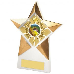 Star Shaped Plaque 15cms. Constructed from a star shaped white and gold coloured resin plaque. Also an area to add an activity centre