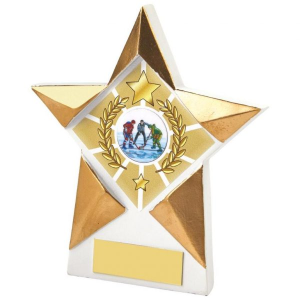 Star Shaped Plaque 13.5cms