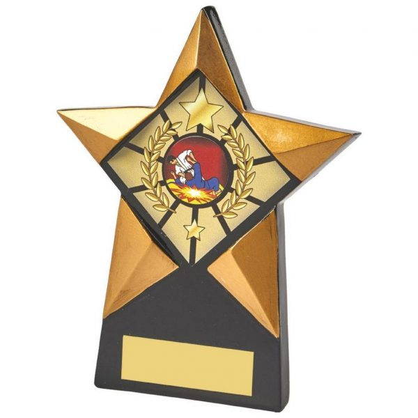 Star Shaped BK Plaque 15cms