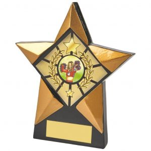 Star Shaped BK Plaque 13.5cms