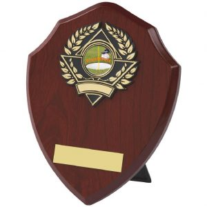 Traditional Footgolf Shield 18cms